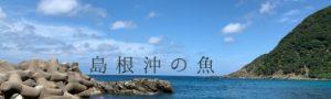 島根沖の魚